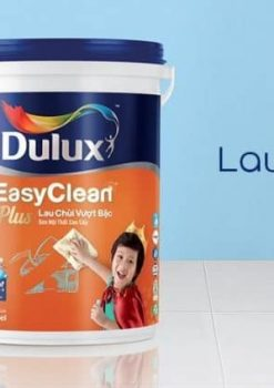 son-noi-that-dulux-lau-chui-vuot-bac